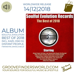 https://www.traxsource.com/title/1064644/soulful-evolution-records-the-best-of-2018