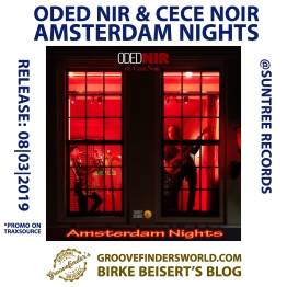 https://www.traxsource.com/title/1093811/amsterdam-nights